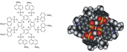 TOC_3_2007-New J. Chem. 2007. 31. 370–376