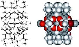 TOC_6_2009-Supramol. Chem. 21. 142–148