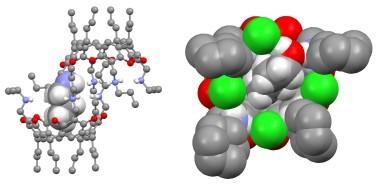 TOC_9_2010-Supramol. Chem. 22. 737-750
